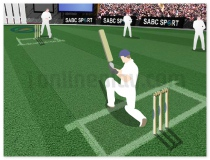 Cricket Challenge free online sports game two teams
