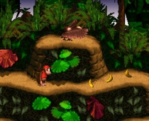 Donkey Kong Country Nintendo retro gaming online emulator
