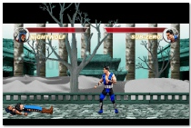 Mortal Kombat Karnage online fighting game